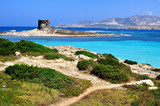View of La Pelosa beach, Stintino, Sardinia, Italy