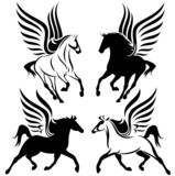 pegasus design - winged horses vector set