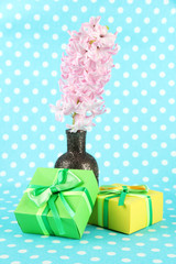 Beautiful hyacinth in vase and beautiful gifts,