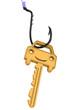 Постер, плакат: Ключ с символом автомобиля висит на рыболовном крючке