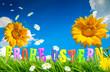 Osterwiese und Sonnenblumen