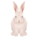 White and pink Happy Easter Bunny isolated - realistic vector