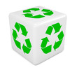 White recycle dice