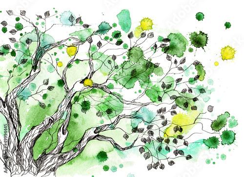 Fototapety, obrazy : tree