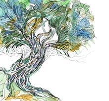 gamla träd