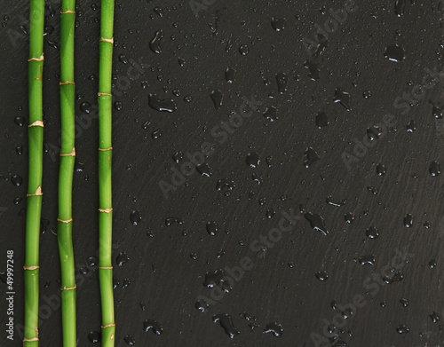 Fototapeten,bambus,pflanze,hintergrund,schiefertafel