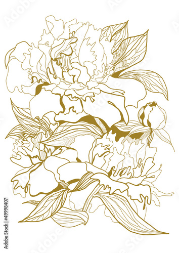 drawing peonies bouquet