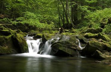 Potok kłopotnica