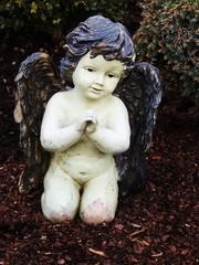 Engel mit gef. Händen