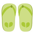 Green slippers illustration