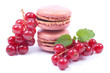 Macarons, Johannisbeeren