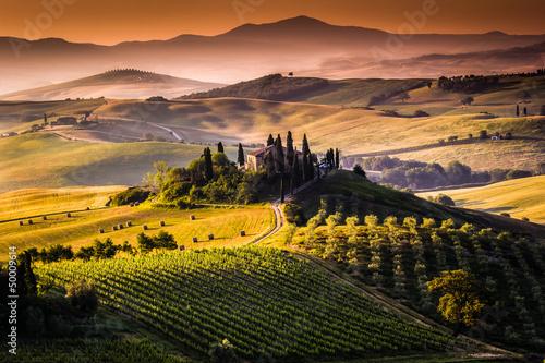 Zdjęcia na płótnie, fototapety na wymiar, obrazy na ścianę : Paesaggio, Toscana - Italia