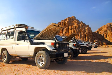 Safari on jeeps