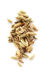 Spices - Fennel