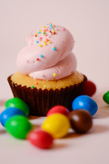 Cupcake surrounded by M&Ms