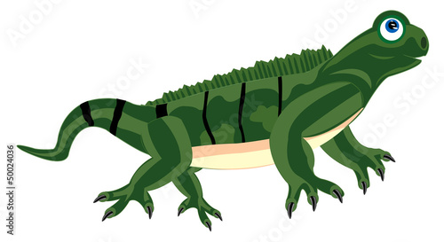 Pangolin iguana on white background