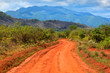 Red ground road and savanna. Tsavo West, Kenya, Africa