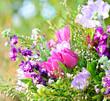 Frühlingserwachen: Blütentraum in blau, lila und pink