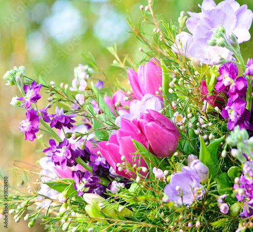 Fototapeta Frühlingserwachen: Blütentraum in blau, lila und pink