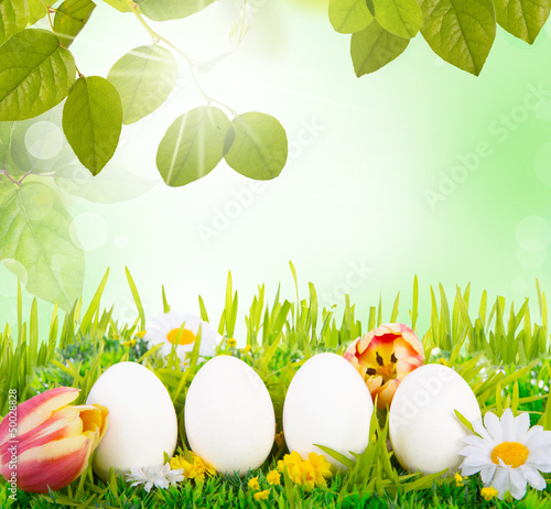easter eggs in nature