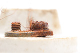 old rusty bolt. macro