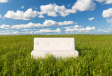 The sofa in the field
