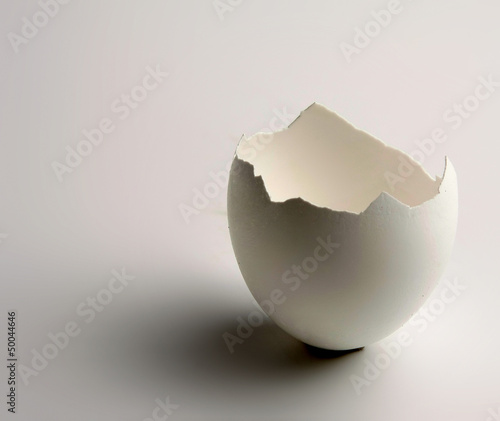 eggshell on a white background