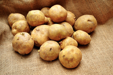 Fresh Whole Delicious Potatoes