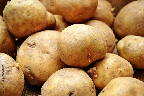 Whole Potato Background