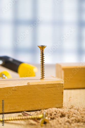 the screw in wooden plank