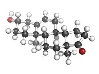 Dehydroepiandrosterone (DHEA, prasterone) steroid molecule, chem