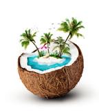 tropical island - 50050893