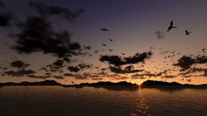 Ducks flying, timelapse sunrise with sea and mountain ridge