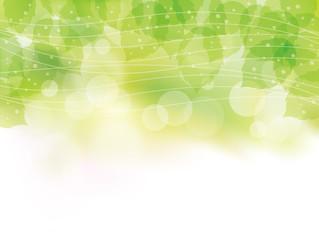 緑の葉_ライン