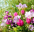 Blumengeschenk im Frühling (in lila-pnk)