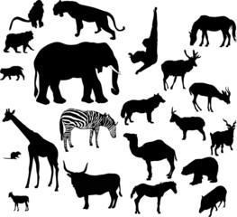 animal silhouettes set isolated on white