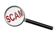Detecting a Scam
