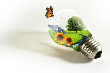 Lampadina con paesaggio ecology