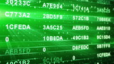 green hexadecimal data columns loopable background