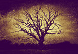 dark bare tree