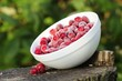 Frozen Cranberries in Bowl on Tree Stump