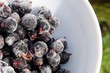 Frozen Blackcurrant in Bowl Close-Up