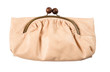 Nude reptile leather clutch