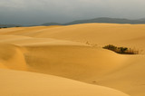 Sand dunes in Venezuela near the city of Coro