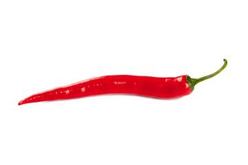Rote Peperoni Freisteller I