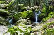 Fototapeten,natur,grün,berg,wasser