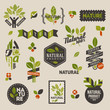 Naturelabels and badges with green leaves - vector set