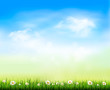 Nature background. Vector illustration