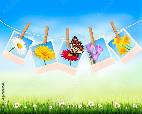 Nature background with photo with flowers and butterfly. Vector