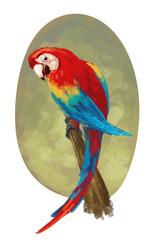 pájaro papagayo mascota